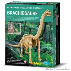 Kit de fouille -Squelette de brachiosaure