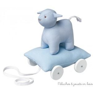 Ce mouton sur coussin à roulettes de couleur Bleu ciel de la marque Trousselier est destiné aux tout petits de 12 mois et plus