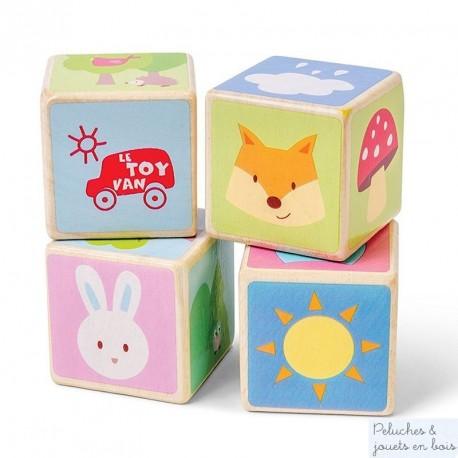 Cubes Animaux en bois