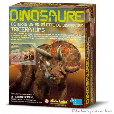 Kit de fouille Squelette de tricératops